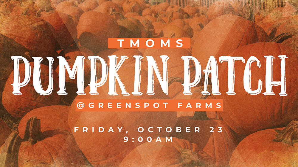 TMOMs Pumpkin Patch Outing
