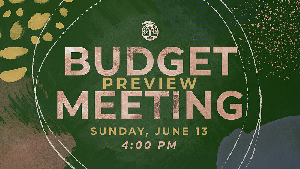 Annual Budget Preview Meeting - 2021